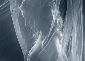 Braut Erotik, Blick durch Schleier